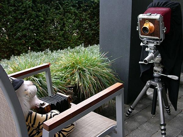 Lensa Kamera dari Kayu Ini Tak Kalah Keren dari Lensa Kamera Biasa